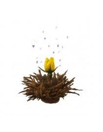 Kvitnúci čaj - Šepot vulkánu