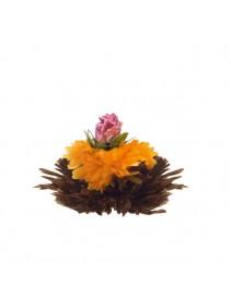 Kvitnúci čaj - Purpurova žiara